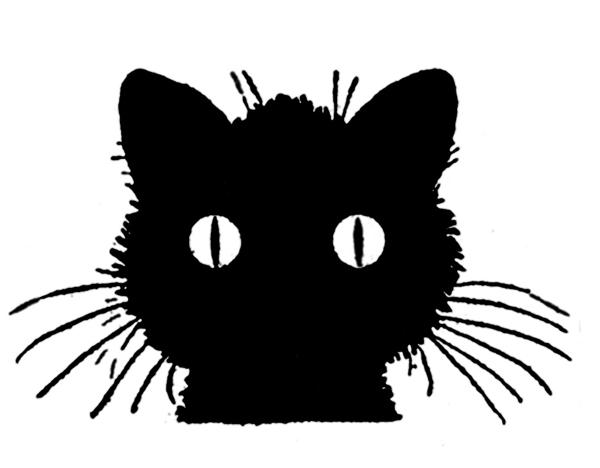 blackcathalloween-1