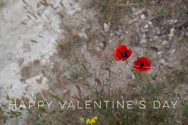 valentinesday16-1